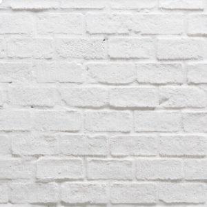 brick backdrop before shiplap wall